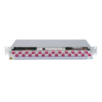 932922 - CCM Patchpanel 1HE Alu PRO